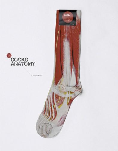 socksAnatomy__02