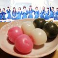Photos: 三色団子