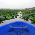 Photos: 小さな船で沼を回る DSCN9063