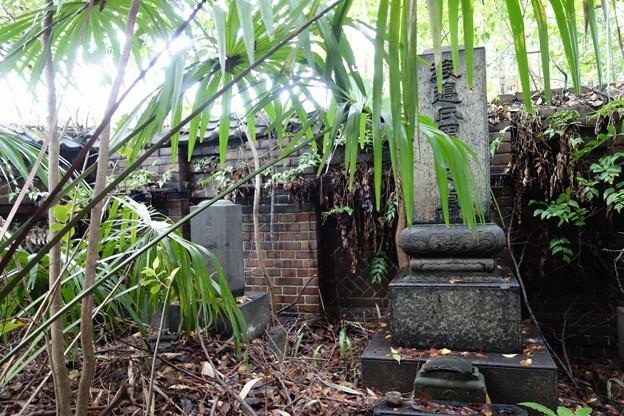 伊藤左千夫の墓:普門院@亀戸DSC02103