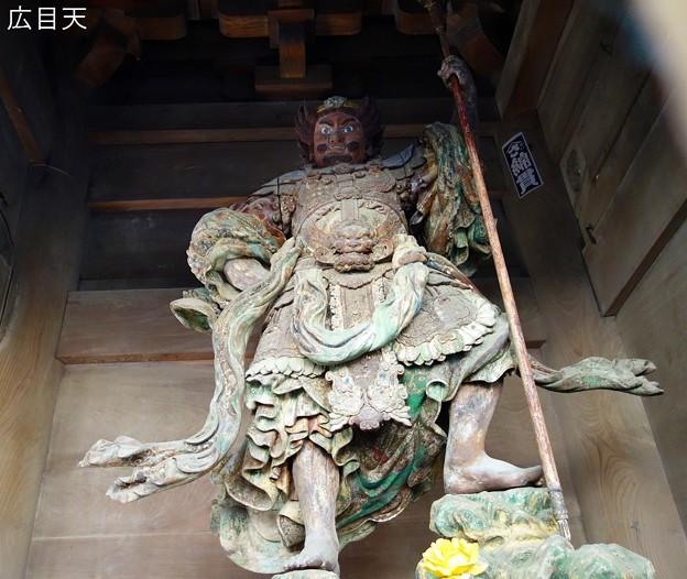 成田山新勝寺DSC03041