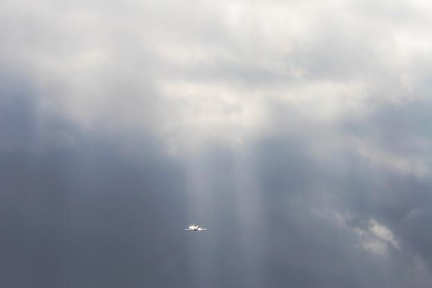 MD-90に光ふりそそぐcc2008.0103