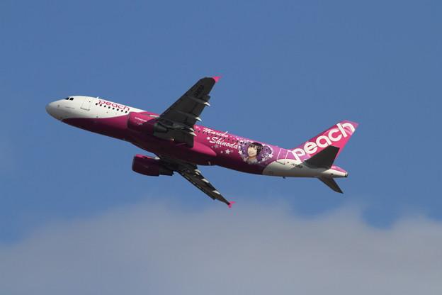 A320 JA805P Peach Mariko JET