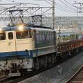 Photos: EF65-1135(工臨)