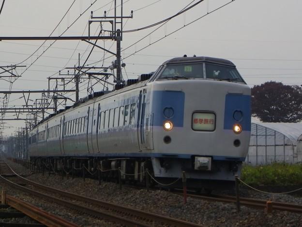 183系幕張車 マリ31編成 集約臨時列車