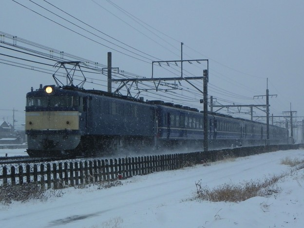 "EF60 19+12系5B+EF65 501 第3回カナロコ列車 ""急行「かながわ」"""