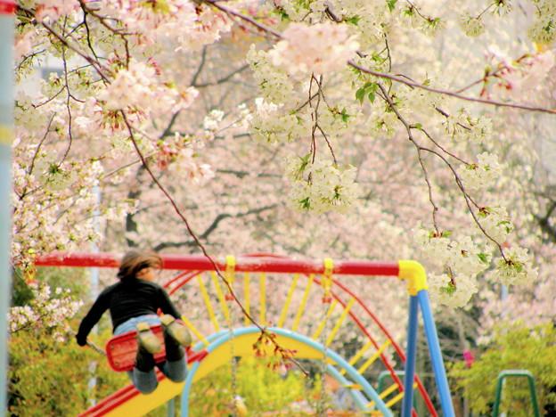 Photos: 春休み!