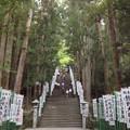 Photos: 熊野本宮大社 階段