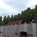 Photos: 熊野本宮大社 本殿