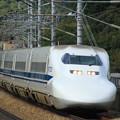 Photos: 700系(山陽新幹線大津トンネル)