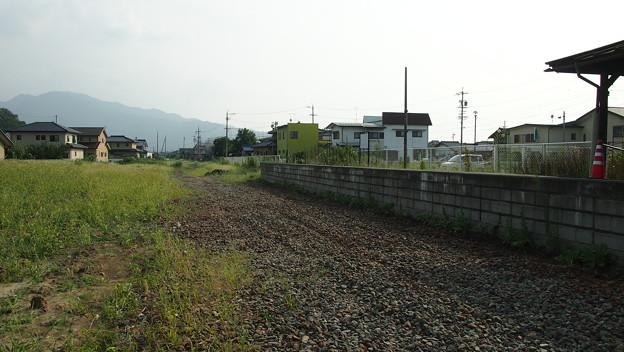 P8157217