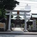 Photos: @hanayuu 柏神社♪...