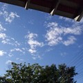 写真: 久しぶりの青、青空~♪。 ...