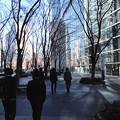 Photos: cool tokyo