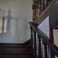 階段の踊り子たち