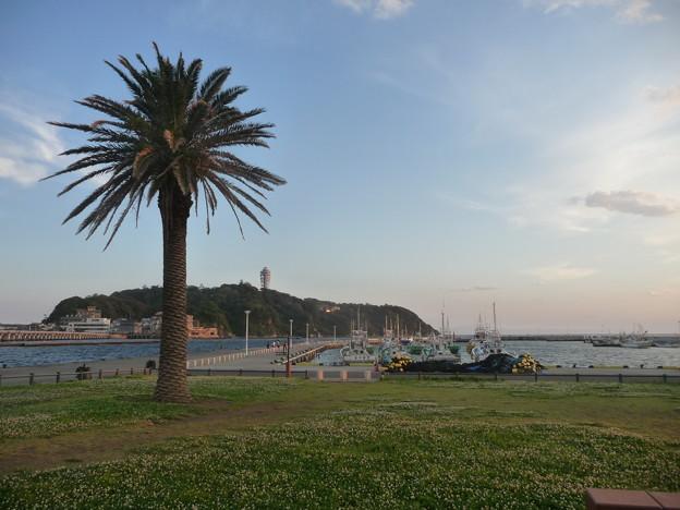 片瀬漁港と江の島