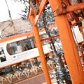 Photos: 朱色な都電