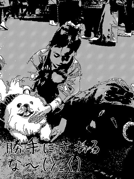 愛犬レオを漫画加工