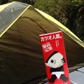 Photos: 高知3