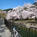 Photos: 琵琶湖疎水