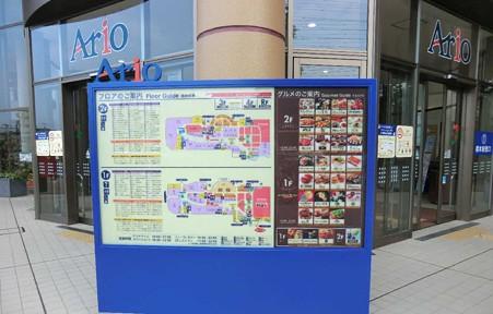 ario hashimoto-240728-5