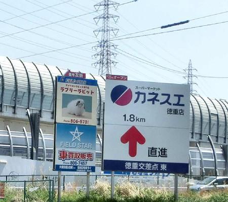 kanesue tokushigeten-250421-5