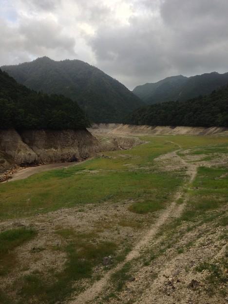 宇連ダム最北端 水底が草原
