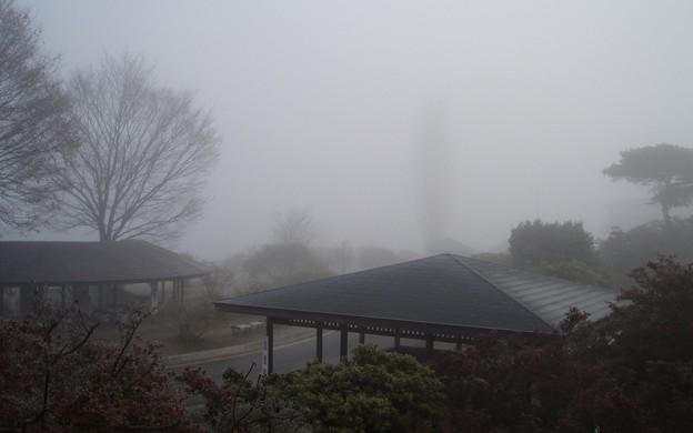 023b3_20140122霧の朝(3)