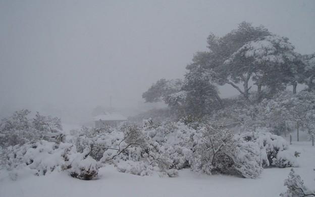 023d4_20140208雪の公園(4)