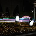 Photos: suicaペンギン イルミネーション