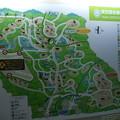 多摩動物園 地図