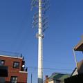 写真: 川世線50号鉄塔