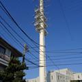 写真: 川世線53号鉄塔