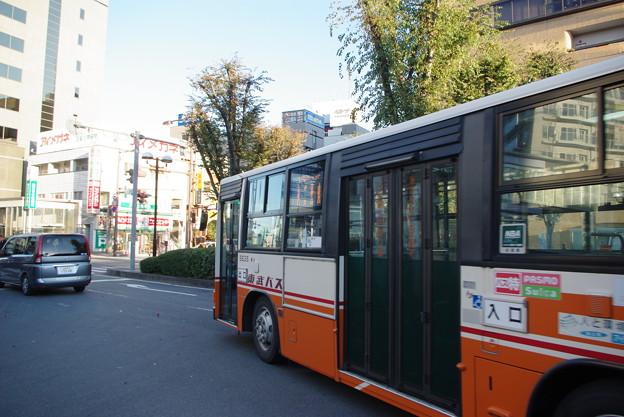IMGP8161