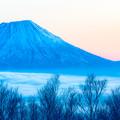 写真: 羊蹄山の目覚め