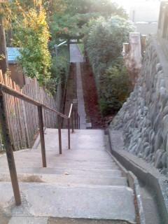 厳島神社の帰り道。