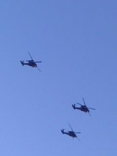 編隊飛行(10月27日、自衛隊観閲式)