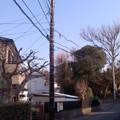 Photos: 木製電柱(1月22日、小袋谷町内会)