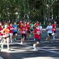 Photos: マドリッド・マラソンに遭遇(スペイン)