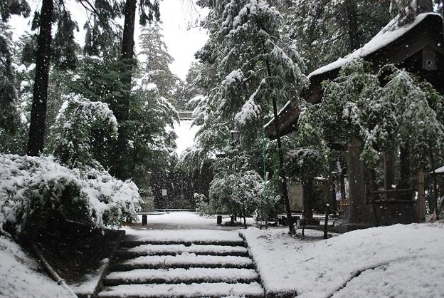 DSC_雪の王子神社s0028