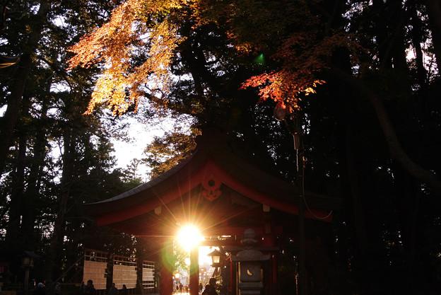 Photos: 手水のお社@鹿島神宮1