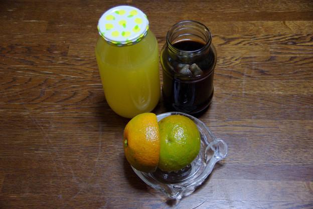 IMGP8259周防大島産酢だいだい、手作りポン酢作ってみた