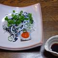 Photos: R0013581山口県産ふく皮湯引きポン酢