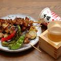 Photos: IMGP9587呉市、千福精撰Vパック赤と焼き鳥地野菜焼