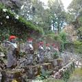 Photos: 2012-11-24ミカン狩り (15)