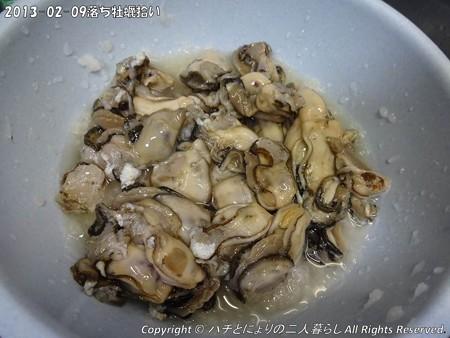 2013-02-09落ち牡蠣拾い (5)