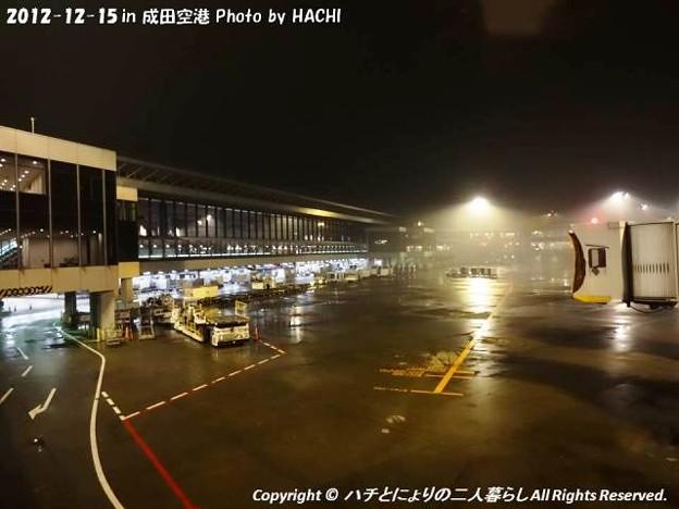 Photos: 2012-12-15サイパンへGO! (5)