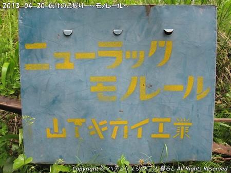 2013-04-20たけのこ掘り (13)