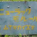 Photos: 2013-04-20たけのこ掘り (13)