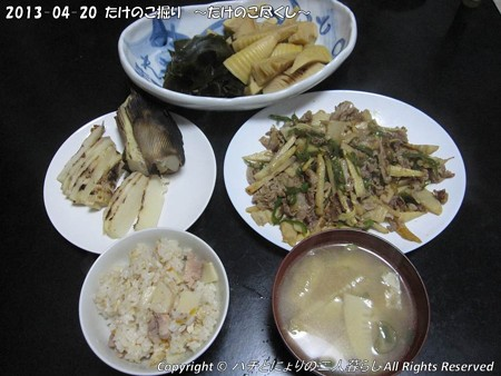 2013-04-20たけのこ掘り (32)